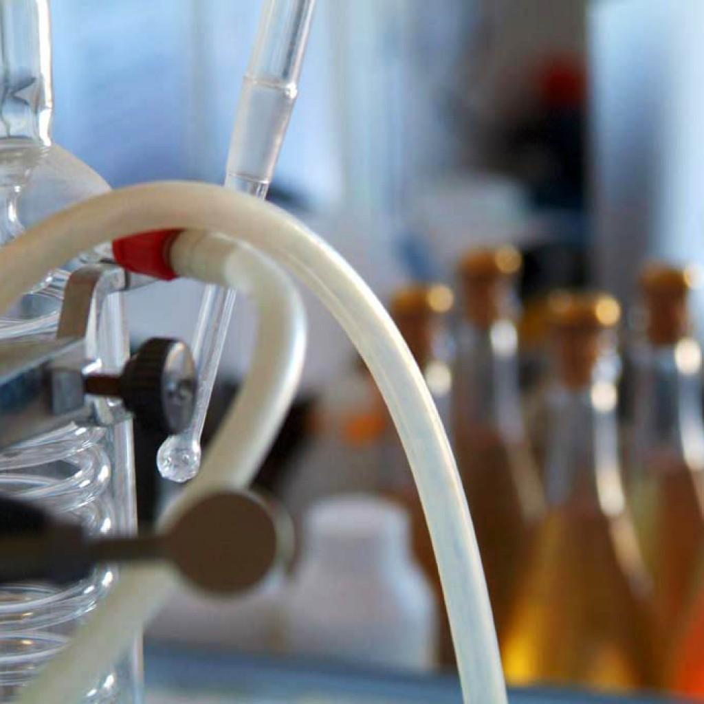 laboratoire oenologique
